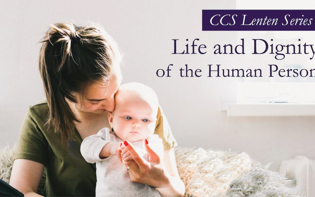 Catholic Social Teaching: Life and Dignity of the Human Person