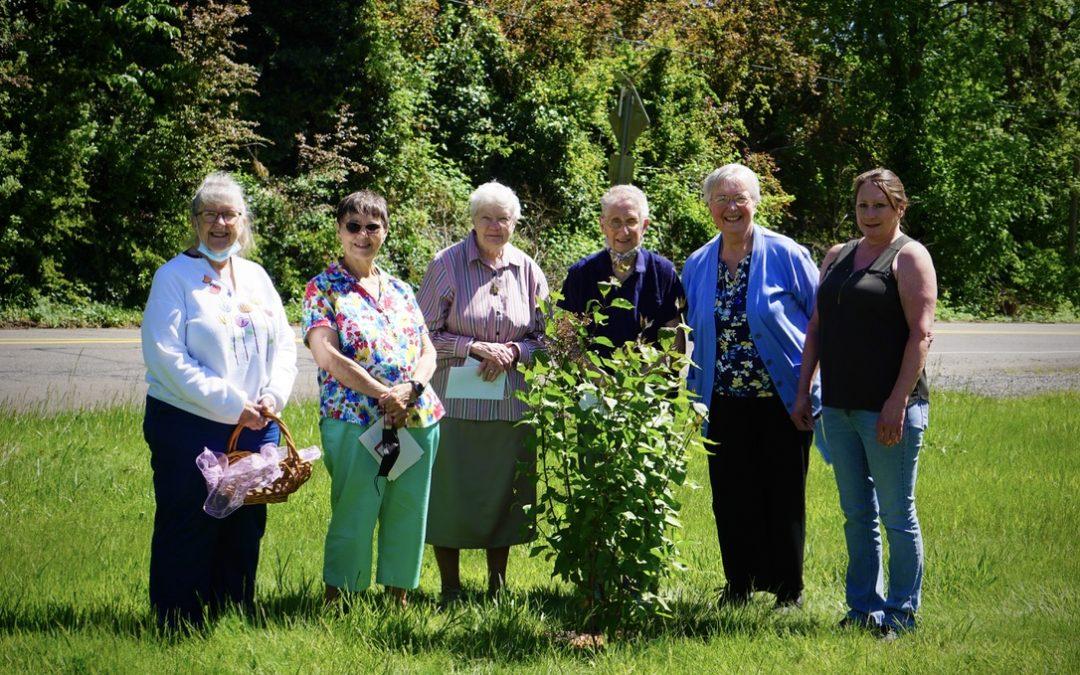 Volunteers, Staff & Sisters Honor Verna Scharbach